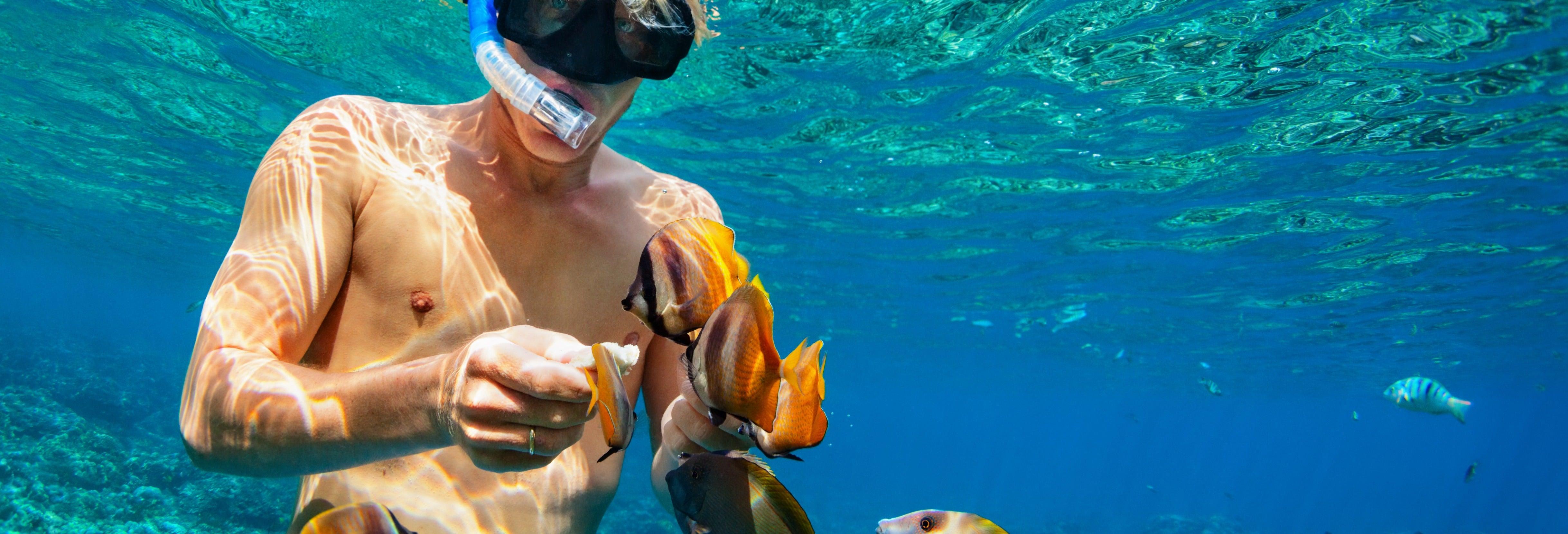 Snorkel en Nusa Penida y Nusa Lembongan