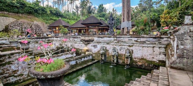 Ubud, Goa Gajah y centro de Bali