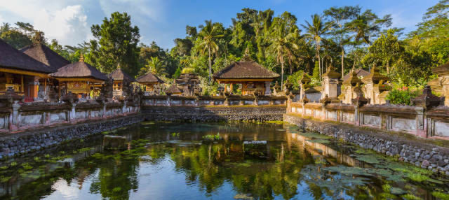 Ubud, Goa Gajah and Central Bali