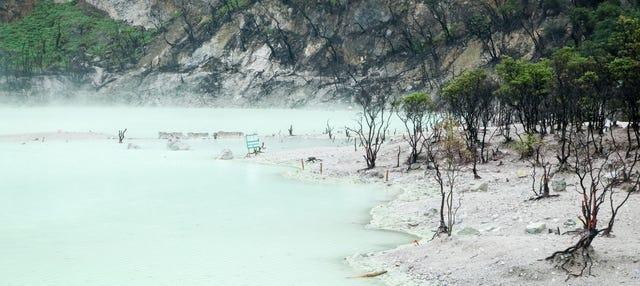 Excursión privada al Cráter Blanco y Rengganis + Reserva de Ciervos
