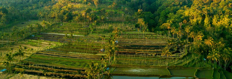 Tour privado por el Lombok oriental
