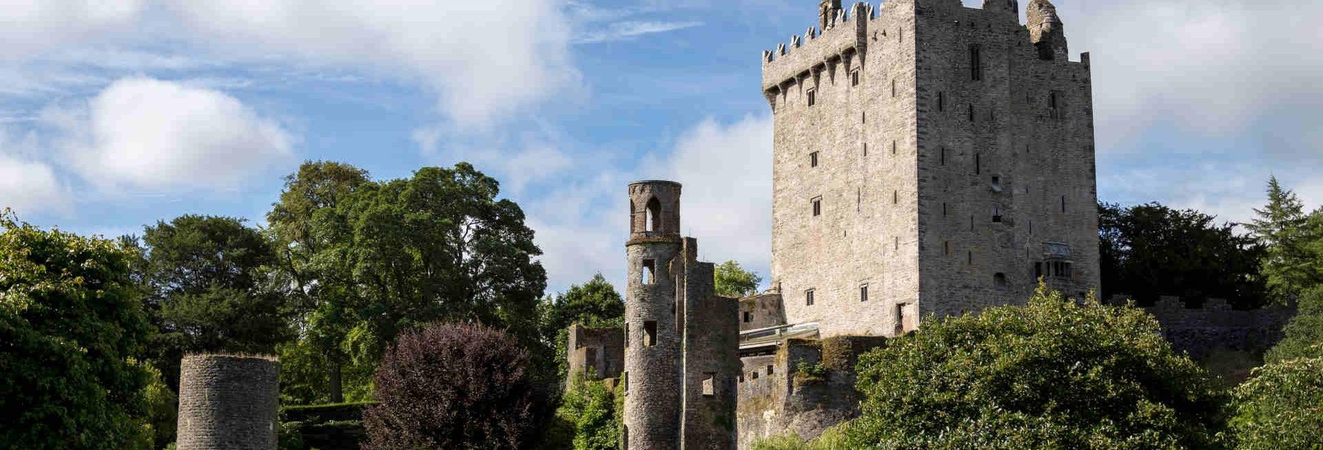 Blarney Castle & Cork Tour