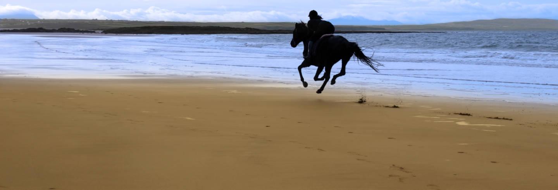 Paseo a caballo por las playas de Grange
