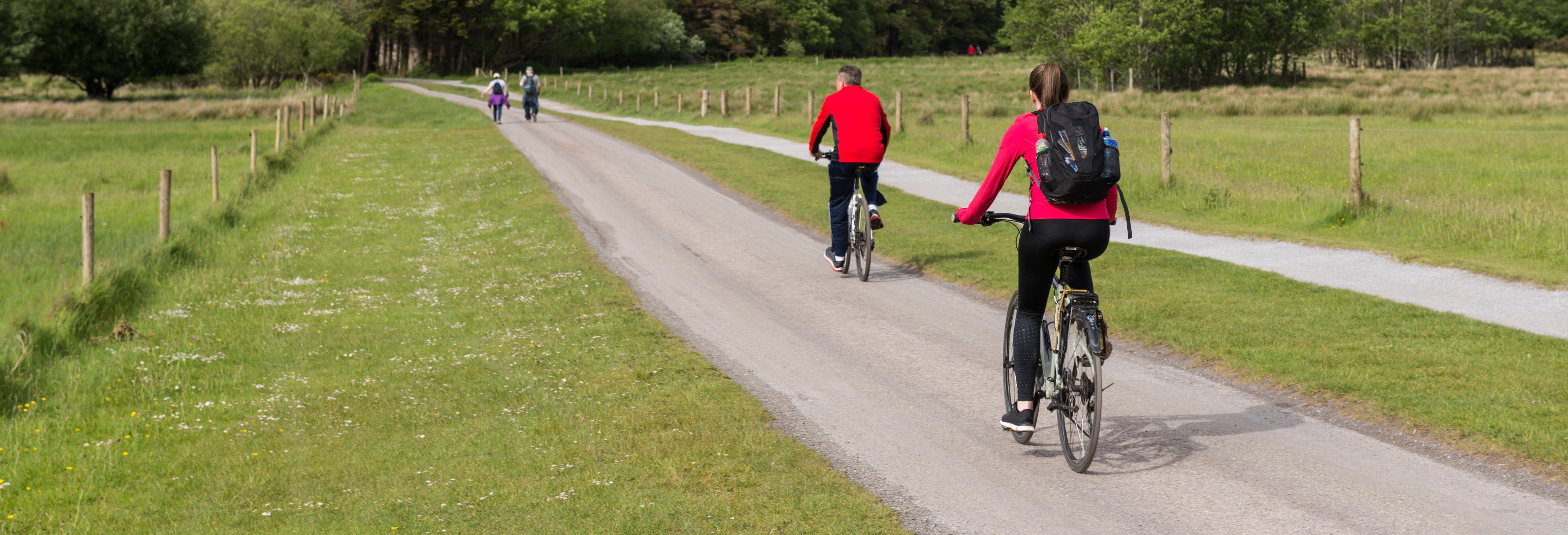Killarney Bike Tour
