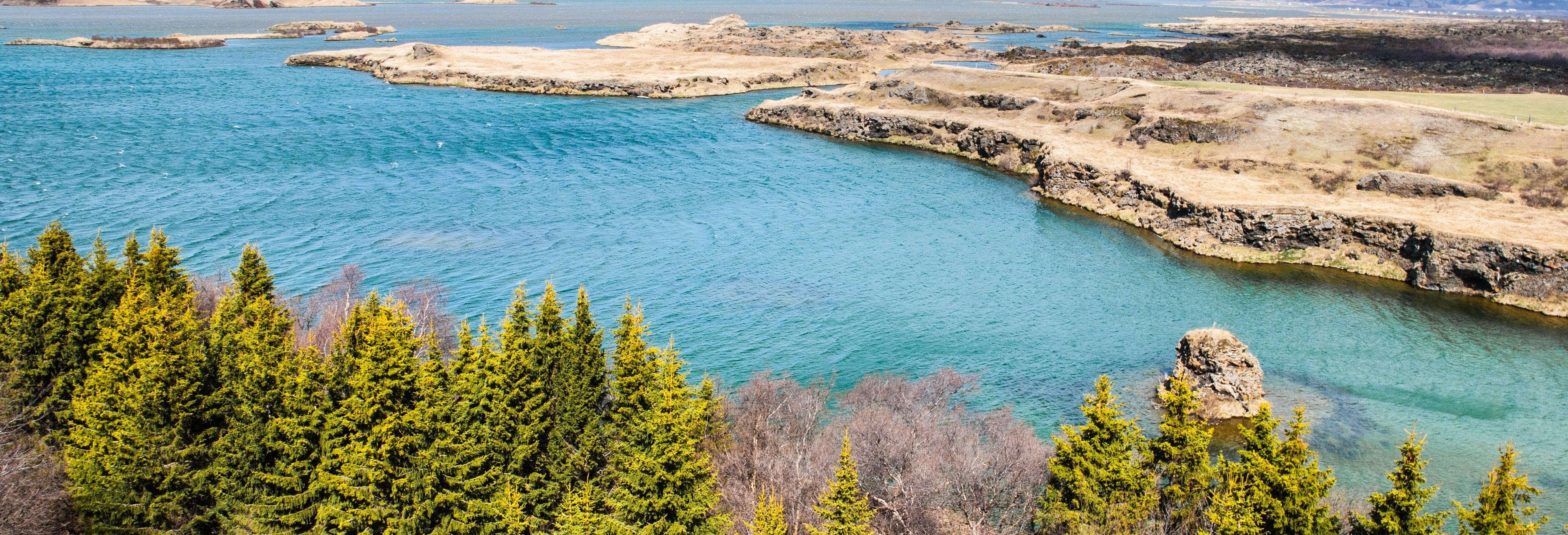 Excursión al lago Mývatn