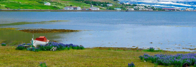 Tour pelos Westfjords para cruzeiros