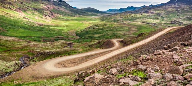 Tour en buggy por las montañas azules