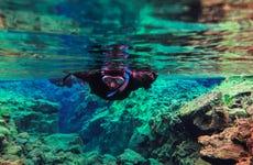 Snorkeling dans la faille de Silfra