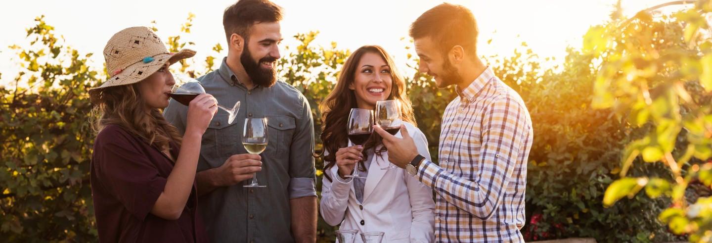 Degustazione di vino all'aria aperta
