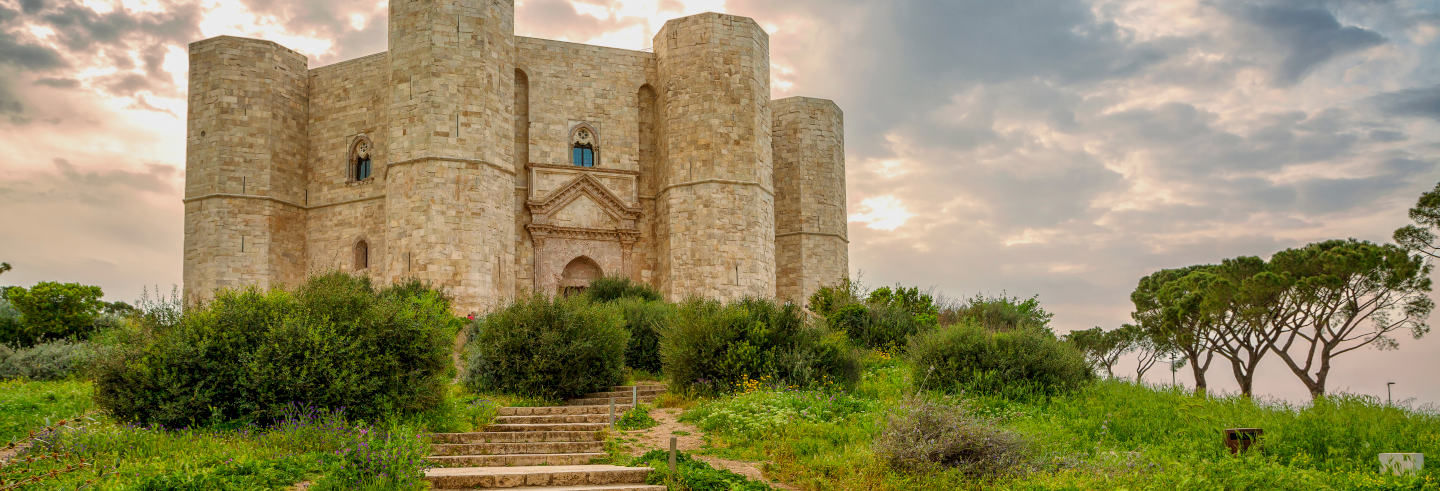 Excursion à Trani et Castel del Monte