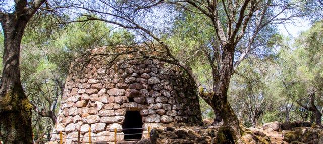 Escursione al sito archeologico di Santa Cristina
