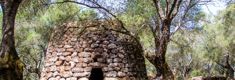 Excursão ao sítio arqueológico de Santa Cristina