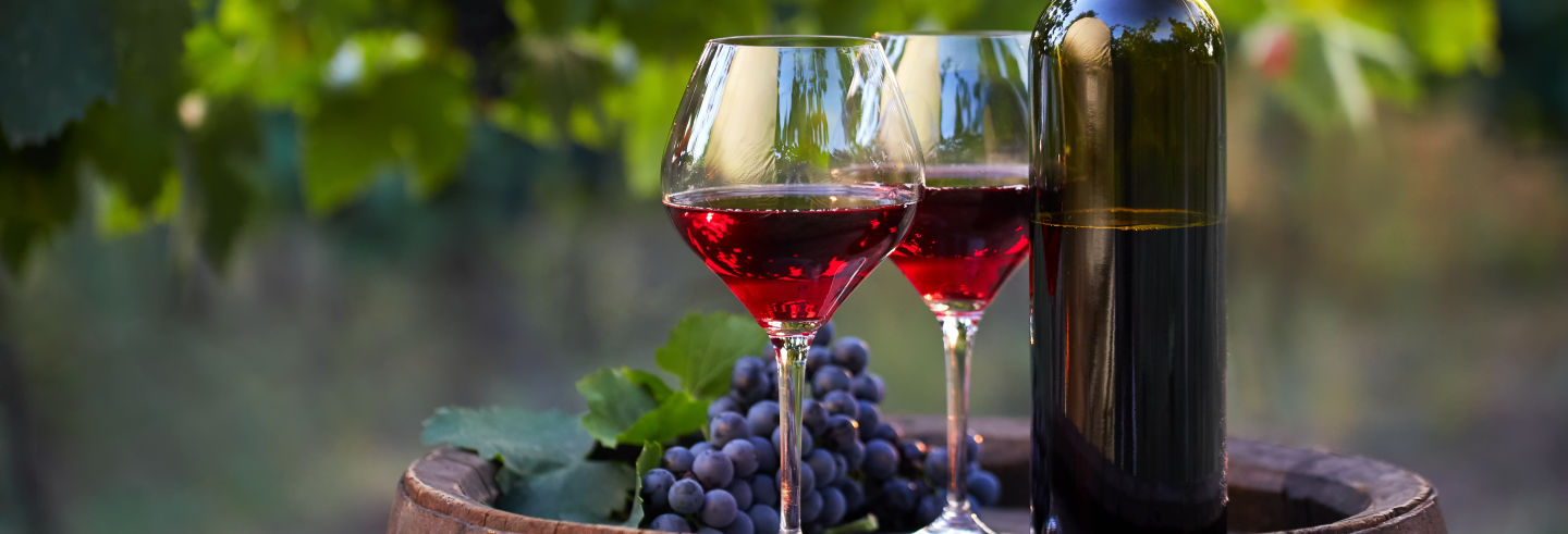 Tour del vino sardo con degustazione