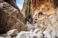 Excursión a la garganta Gorropu