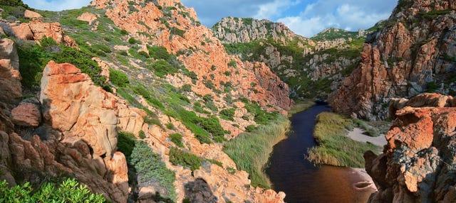 Discesa in corda nel canyon di Codula Fuili