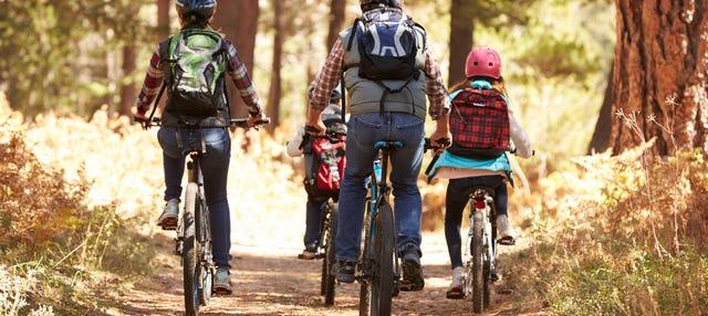 Noleggio bici a Camigliatello Silano
