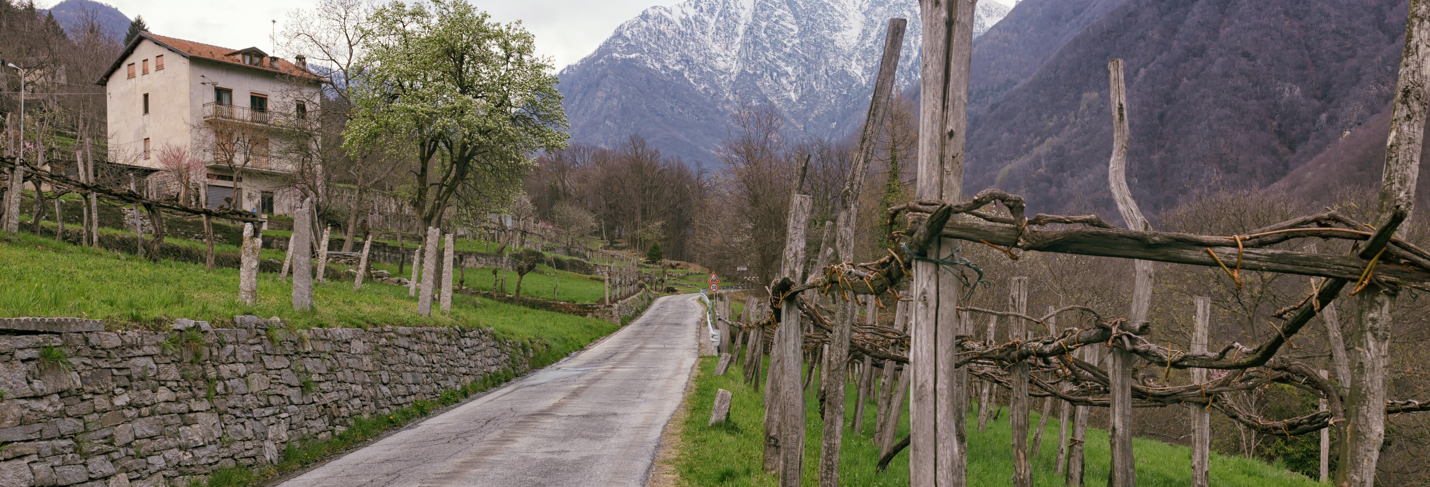 Senderismo por Montecrestese + Cata de vinos