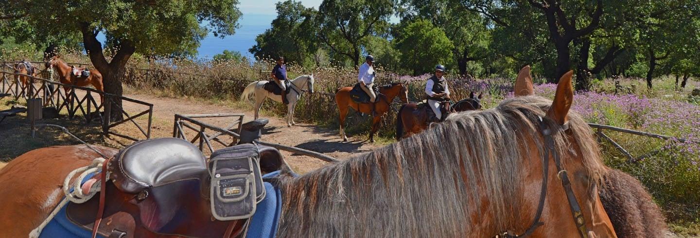 Giro a cavallo nel Parco naturale delle Madonie