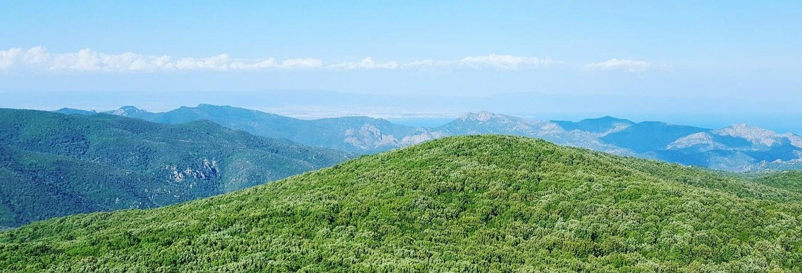 Excursion aux nuraghes de Sardaigne