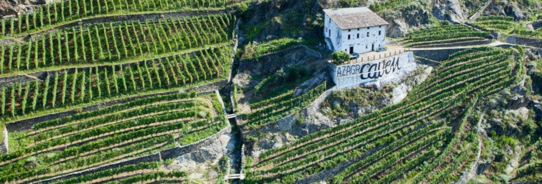 Degustazione di vino a Chiuro