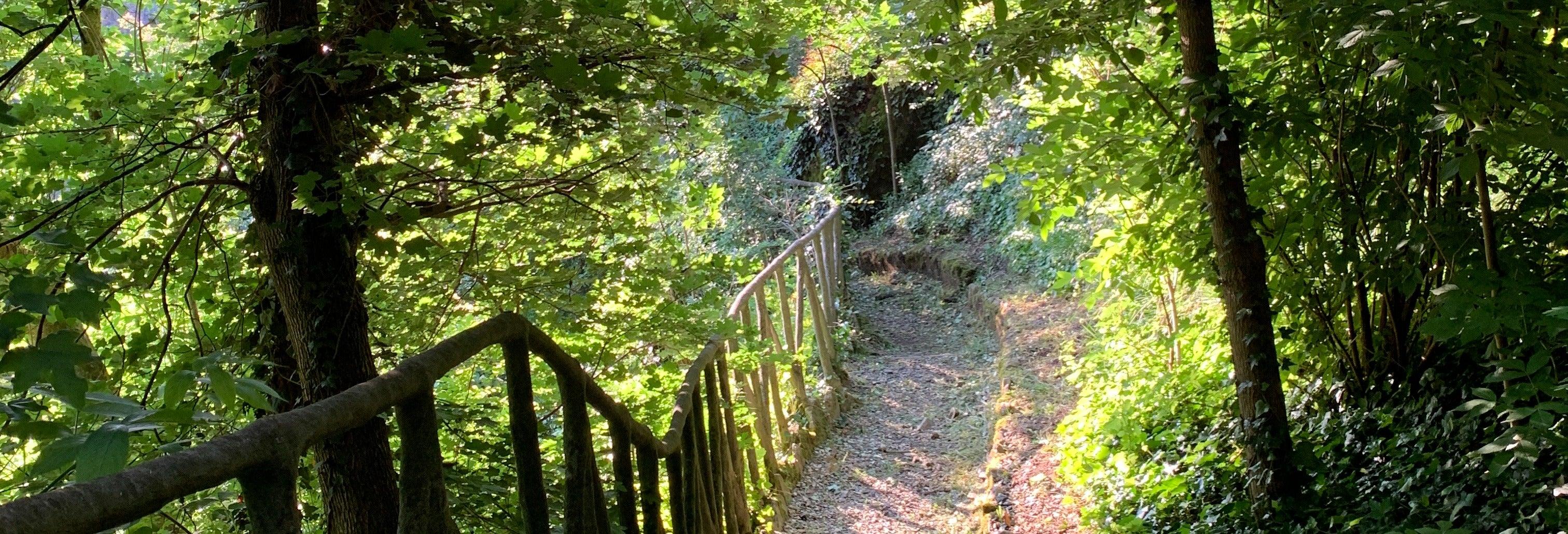 Visite des gorges de Vezzeno