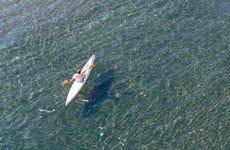 Tour in kayak delle Cinque Terre