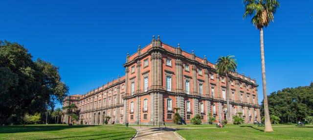 Tour privado por el Museo de Capodimonte