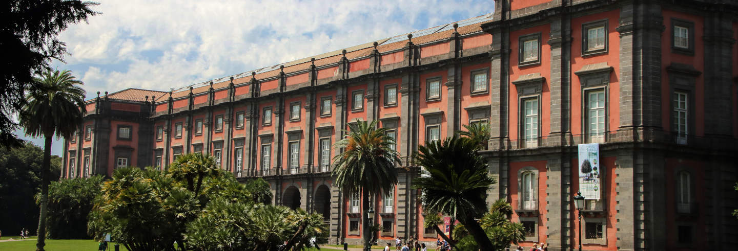 Private Tour of the Capodimonte Museum