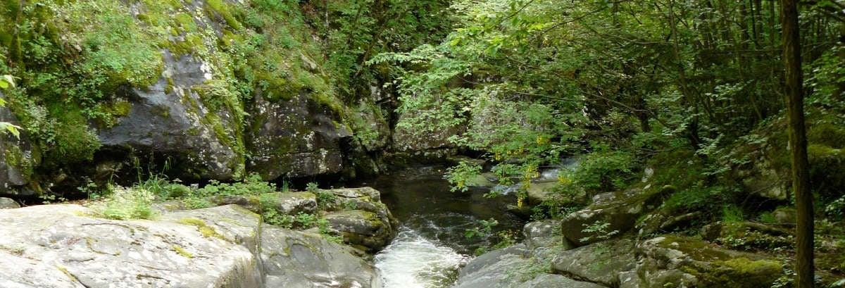 Trekking al torrente Resco Simontano