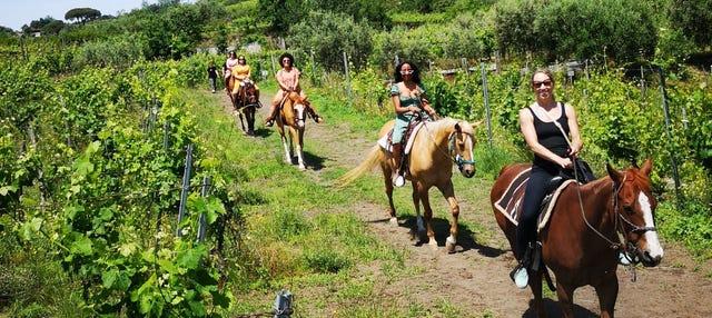 Escursione a cavallo al Parco Nazionale del Vesuvio + degustazione di vini