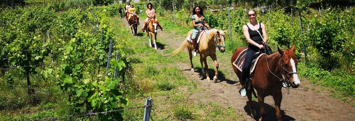 Paseo a caballo por el Vesubio + Cata de vinos