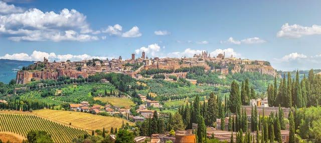 Escursione a Orvieto e Assisi