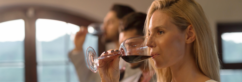 Dégustation de vins à Rome