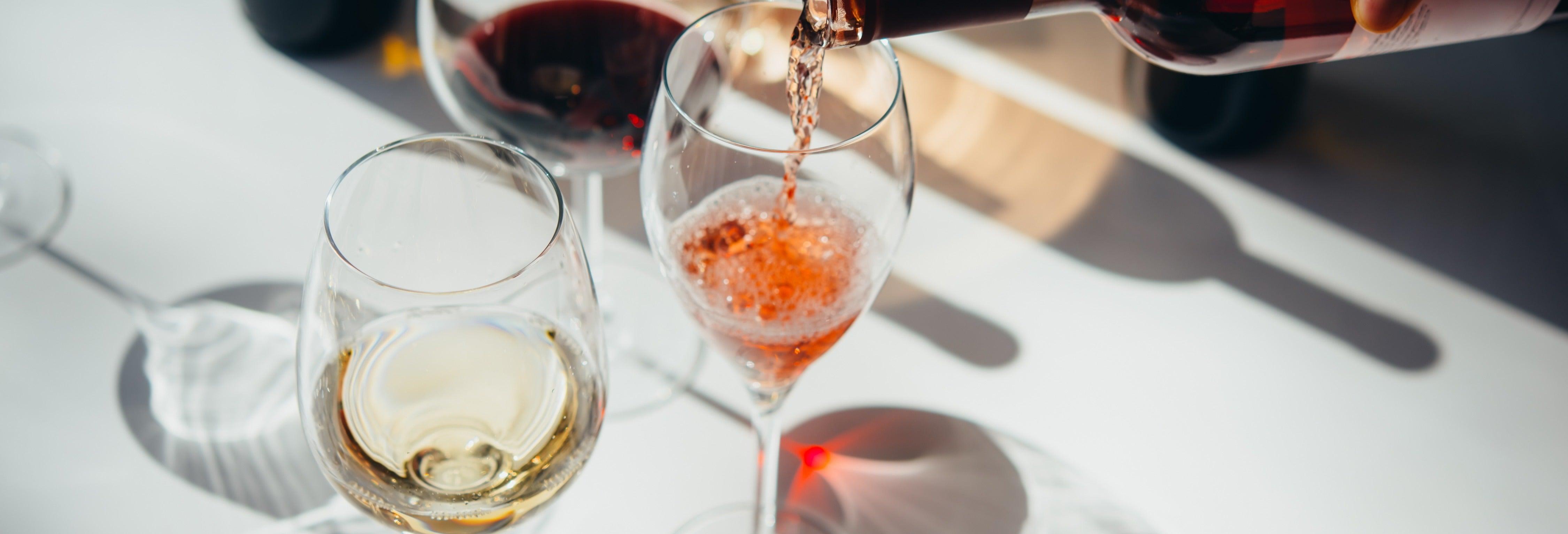 Cata de vinos en Trieste