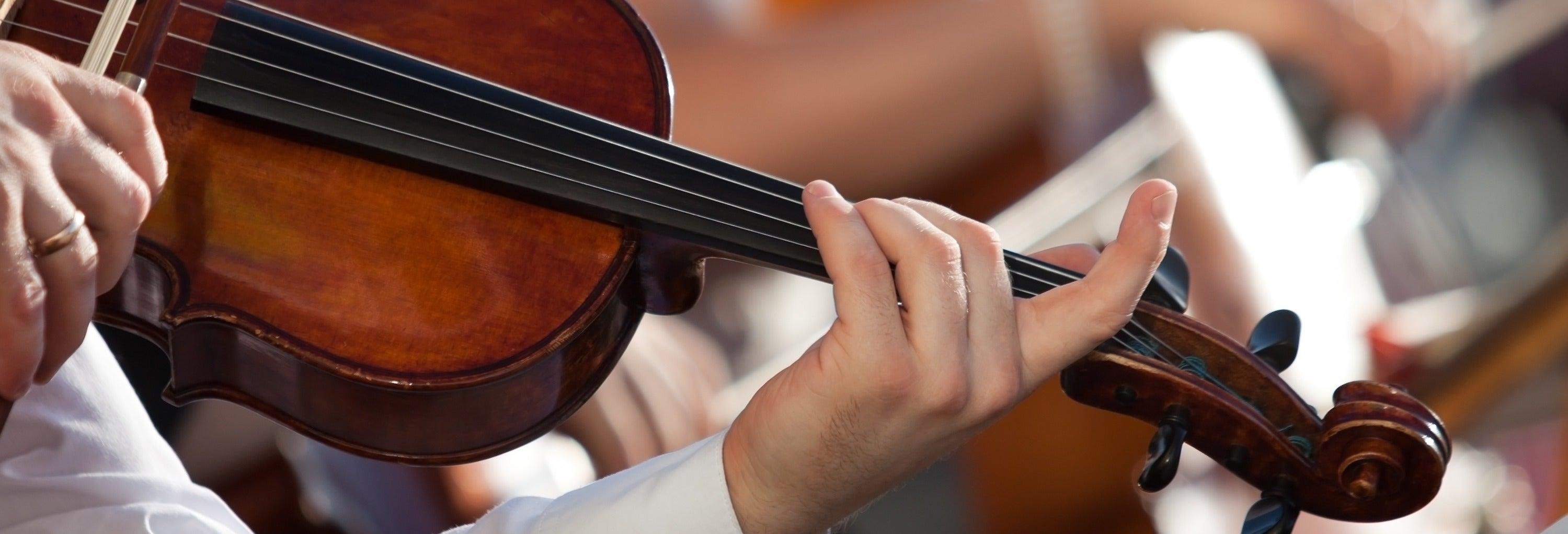 Concierto de la orquesta Collegium Ducale
