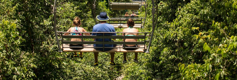 Excursion au Rainforest Adventures Mystic Mountain