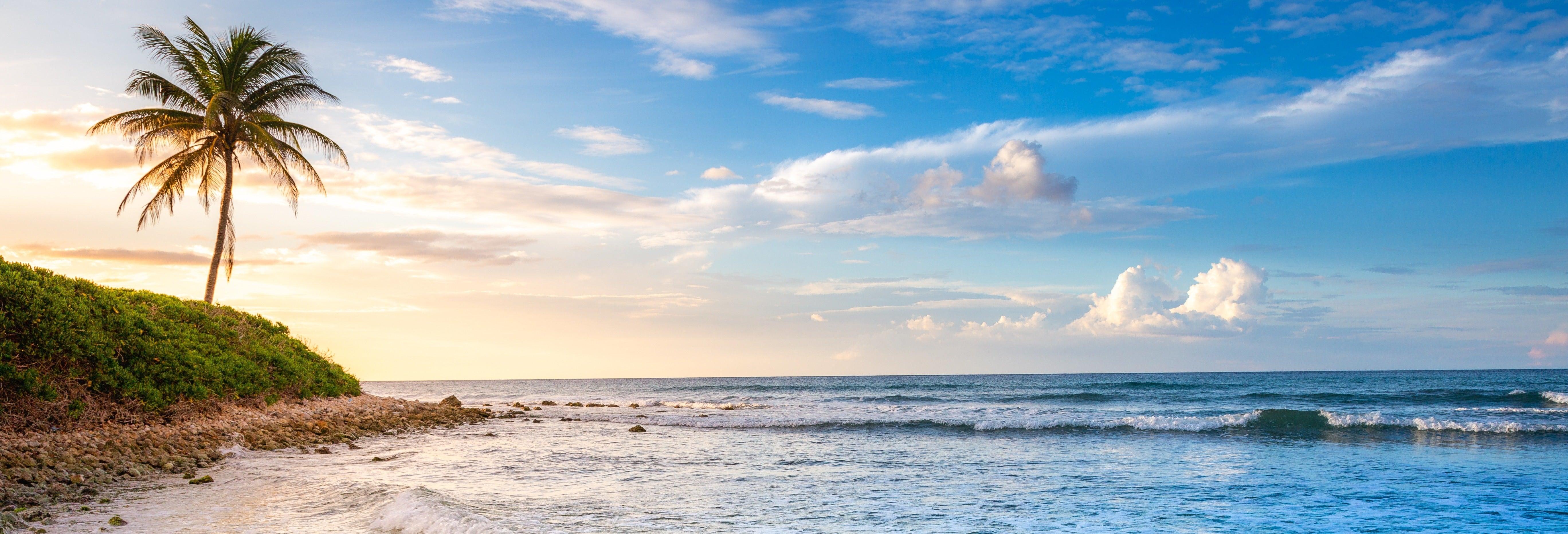 Parasailing + Jet ski em Montego Bay