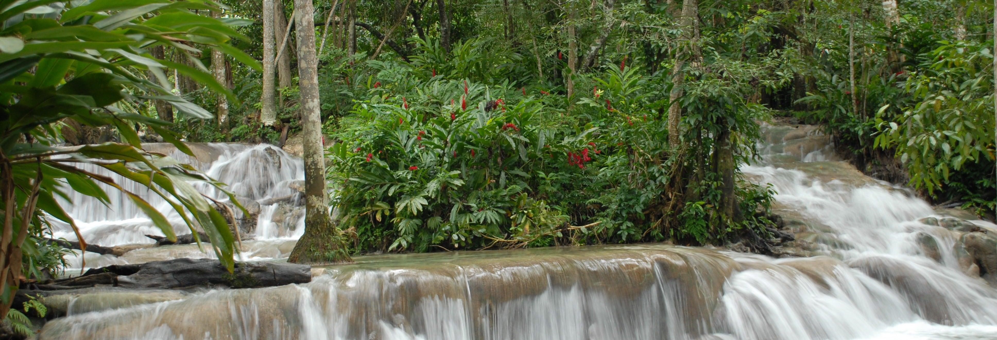 Escursione alle cascate del fiume Dunn