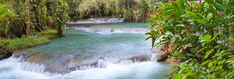 Excursión al Rainforest Adventures Mystic Mountain para cruceros