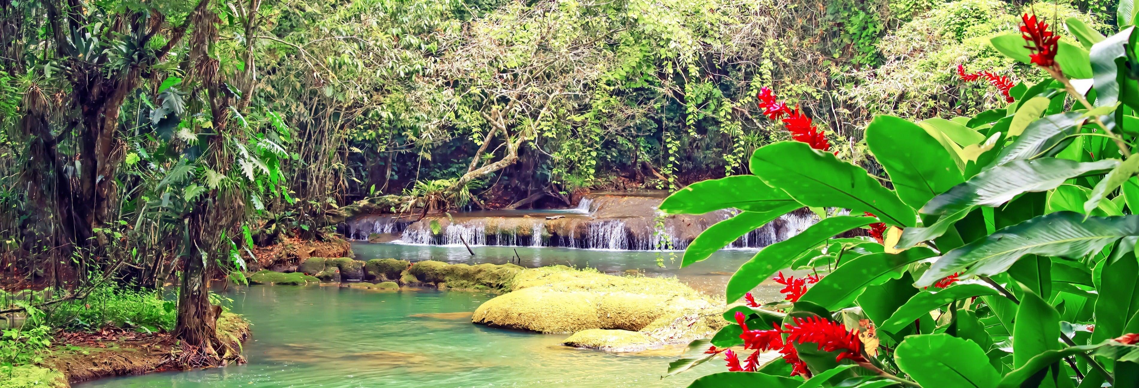 Excursão ao Rio Negro e Cataratas YS