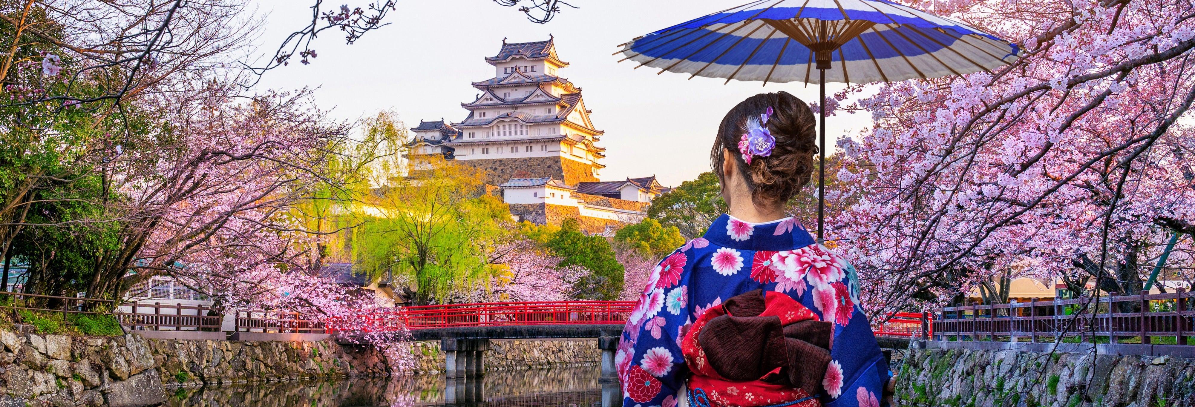 Visita guiada por el Castillo de Himeji