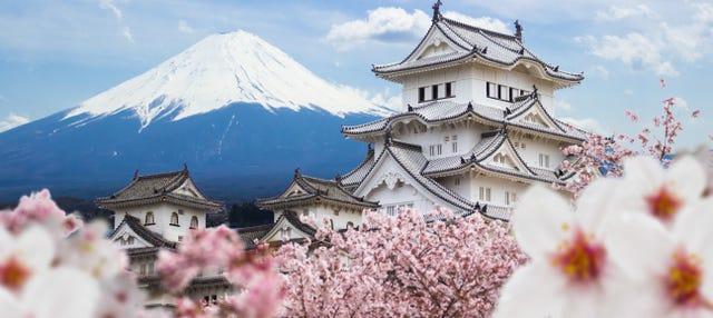 Excursión privada a Himeji y Kobe