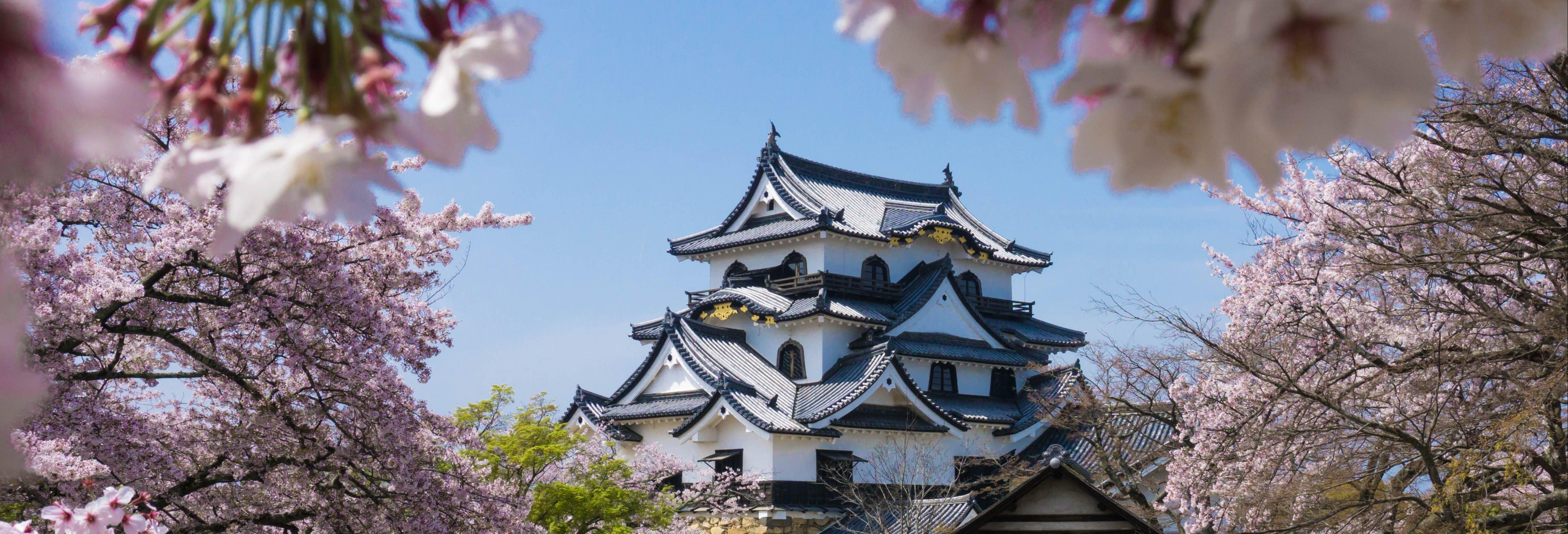 Excursión a Osaka
