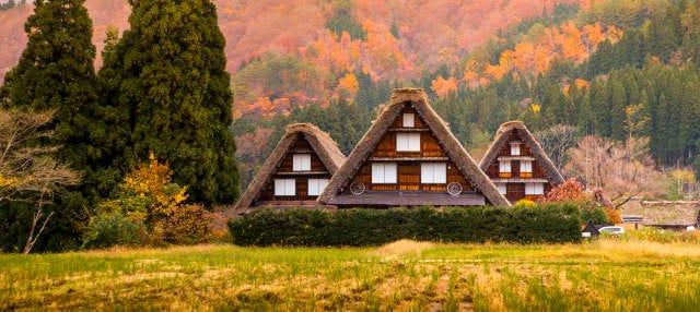 Takayama and Shirakawago Day Trip