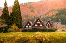 Takayama and Shirakawago Day Trip