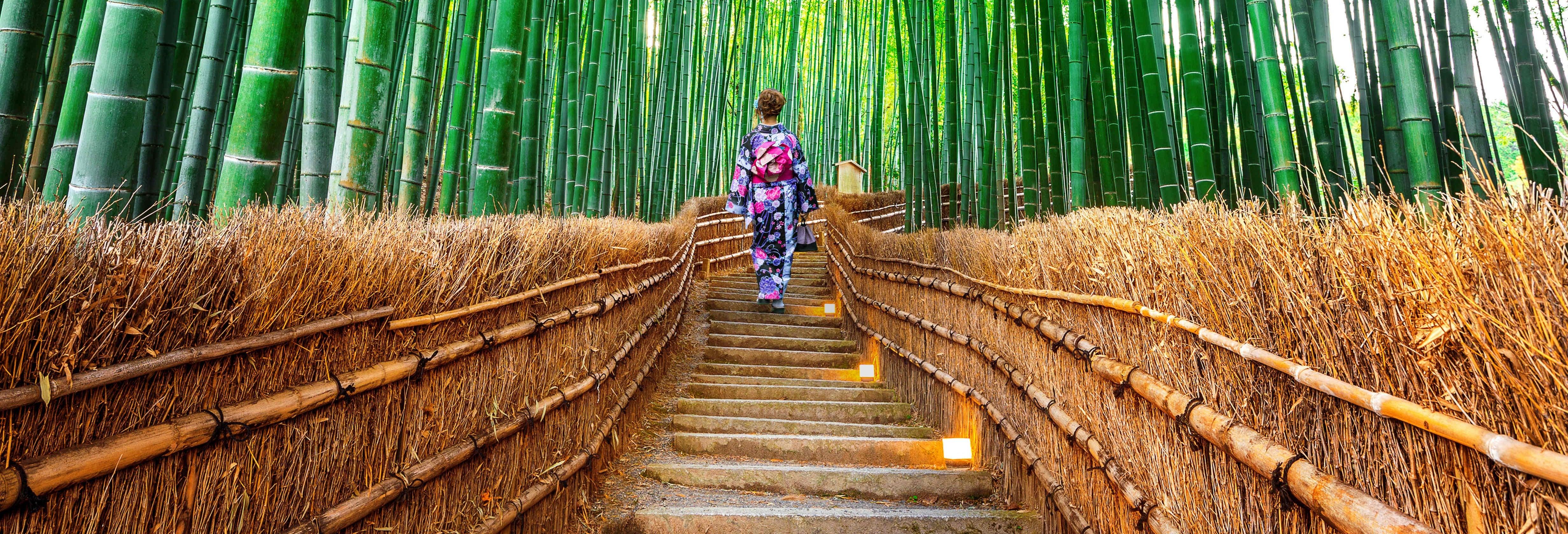 Excursion à Nara et Arashiyama