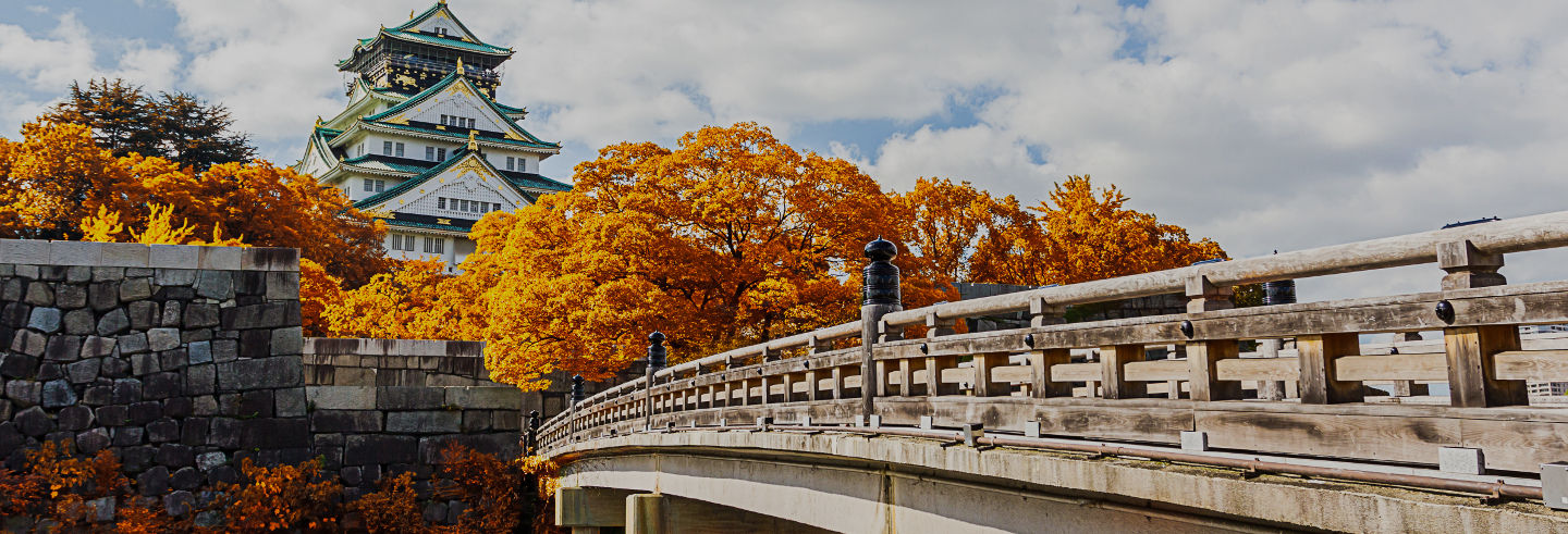 Osaka Amazing Pass