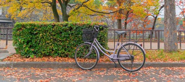 Tour de bicicleta por Osaka