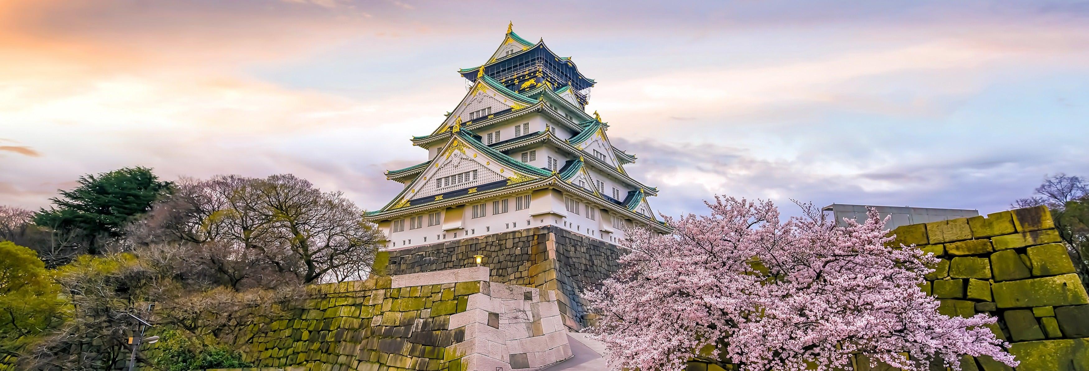 Tour privado por Osaka