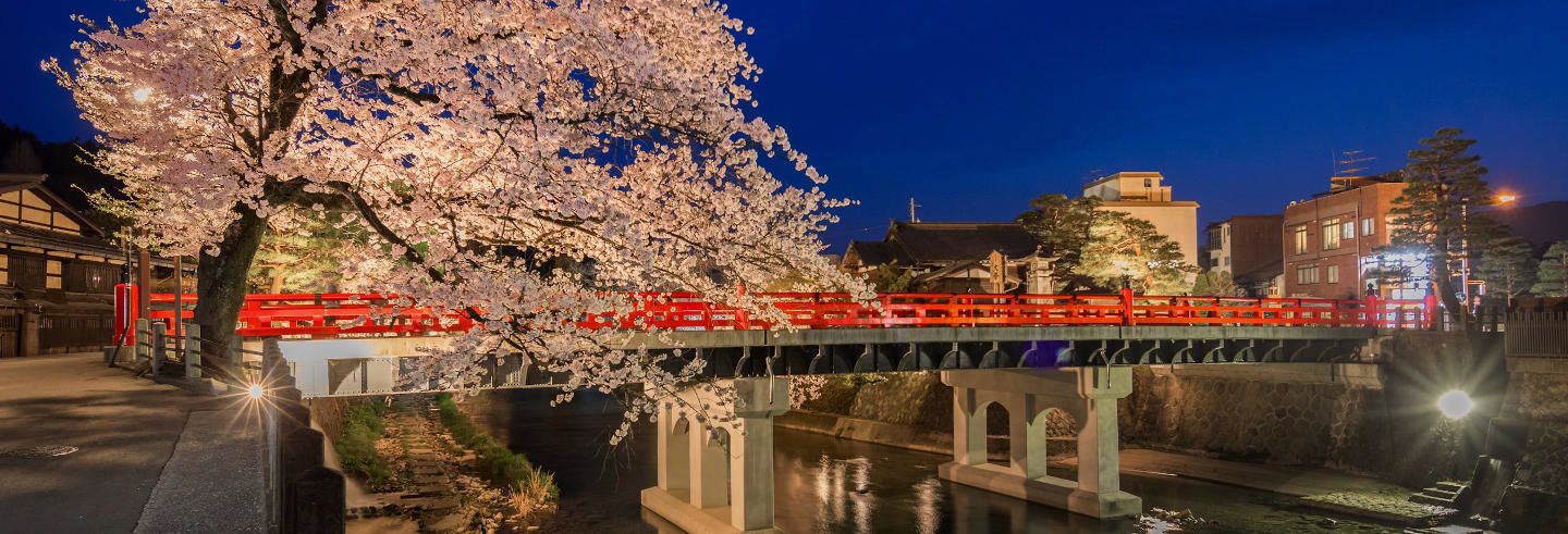 Tour nocturno por Takayama